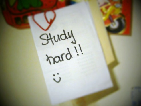 study-hard